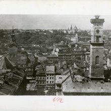 Lwów, panorama